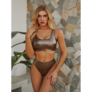 Custom Made Two Pieces Bikini Shining Silver Bikini Sport Swimsuit